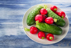 Fresh healthy   radish and cucumbers on  white plate.  Stock Image