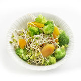 Fresh healthy radish sprout salad with apricot and broccoli Stock Images