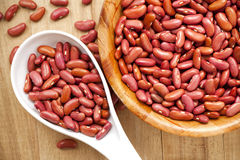 Fresh and healthy red beans Stock Image