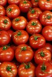 Fresh, healthy, red tomatoes stock photography