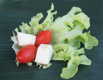Fresh healthy salad Stock Image