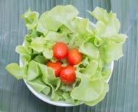 Fresh healthy salad Royalty Free Stock Image