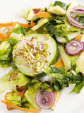 Fresh and healthy salad closeup royalty free stock photo