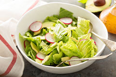 Fresh healthy salad with romaine and avocado Stock Image