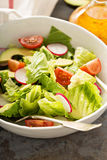 Fresh healthy salad with romaine and avocado Stock Images