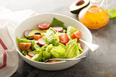 Fresh healthy salad with romaine and avocado Royalty Free Stock Images
