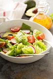 Fresh healthy salad with romaine and avocado Royalty Free Stock Image