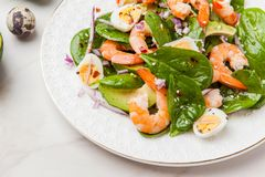 Fresh, healthy salad with shrimps, spinach and avocado on a marb Royalty Free Stock Images