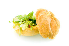 Fresh healthy sandwich. Filled with cheese and lettuce isolated on white background royalty free stock image