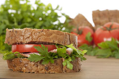Fresh healthy sandwich Stock Photos