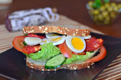 Fresh and healthy sandwich with salami and vegetables on a plate Stock Images