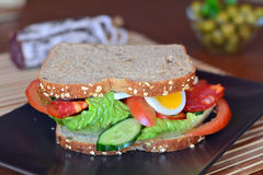 Fresh and healthy sandwich with salami and vegetables on a plate Royalty Free Stock Photography