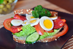 Fresh and healthy sandwich with salami and vegetables on a plate Stock Photography