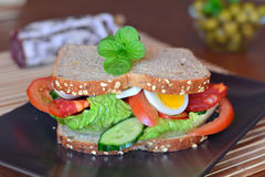 Fresh and healthy sandwich with salami and vegetables on a plate Stock Image
