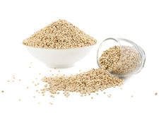 Sorghum Seed. Fresh and Healthy Sorghum Seed Stock Photos