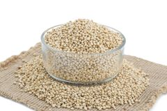 Sorghum Seed. Fresh and Healthy Sorghum Seed Stock Images
