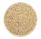 Sorghum Seed. Fresh and Healthy Sorghum Seed Royalty Free Stock Photo