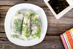Fresh healthy spring roll wrap. Fresh healthy vegetable spring roll wrap Royalty Free Stock Photos