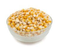Sweet Corn Seed. Fresh and Healthy Sweet Corn Seed Royalty Free Stock Photos
