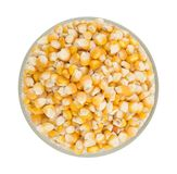 Sweet Corn Seed. Fresh and Healthy Sweet Corn Seed Royalty Free Stock Photo