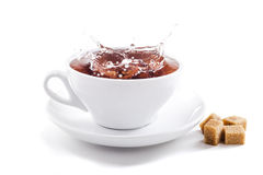 Fresh healthy tea splash in a tea-cup Royalty Free Stock Image