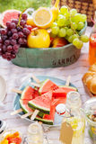 Fresh healthy tropical fruit on a picnic blanket. On the grass with sliced watermelon on sticks and a bowl of grapes, apple, grapefruit, orange and banana Royalty Free Stock Photo