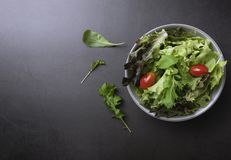 Fresh healthy vegetable salad with tomato, spinach, lettuce in plate on table background with free text space for diet menu.  royalty free stock images