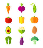 Fresh healthy vegetables flat style organic icons Stock Image