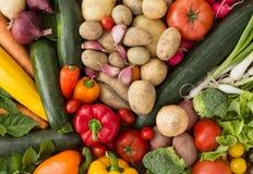 Fresh healthy vegetables Stock Photos