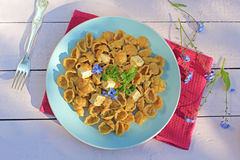 Fresh healthy vegetarian meal, wholemeal pasta with tofu Royalty Free Stock Photography
