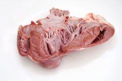 Fresh heart. A fresh, raw heart of a cow Stock Photos