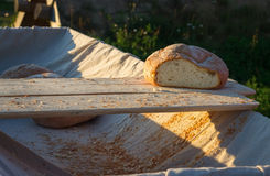 Fresh hearth bread on board in the cart. Royalty Free Stock Image