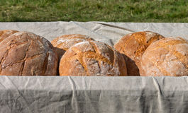 Fresh hearth bread in the cart Royalty Free Stock Photos