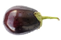 Fresh heirloom eggplant isolated. Closeup Royalty Free Stock Photos