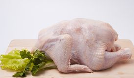 Fresh hen - broiler with greens Stock Photo