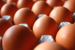 Fresh hen's eggs in paper container Royalty Free Stock Images