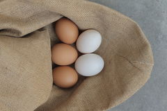 Fresh hens eggs and duck eggs. Shopping white and brown fresh hens eggs on my hand Royalty Free Stock Images