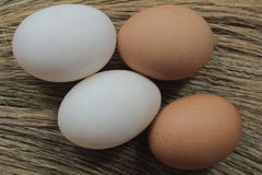 Fresh hens eggs and duck eggs. Shopping white and brown fresh hens eggs on my hand Royalty Free Stock Photo