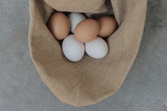 Fresh hens eggs and duck eggs. Shopping white and brown fresh hens eggs on my hand Stock Images