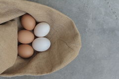 Fresh hens eggs and duck eggs. Shopping white and brown fresh hens eggs on my hand Stock Photography