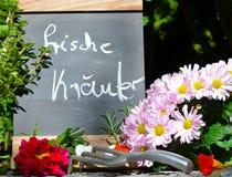 Fresh herb garden table. Flowers garden decoration slate board Royalty Free Stock Photography