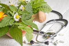 Fresh herb and stethoscope alternative medicine Stock Photography