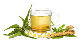 Fresh herbal infusion for detoxifying cure Stock Photography