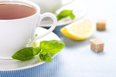 Fresh herbal mint tea Royalty Free Stock Photos