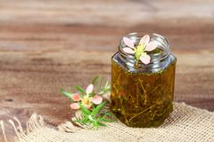Fresh herbal skincare cosmetics. Herbal oil with fresh rosemary leaves on burlap and the brown wooden board stock image