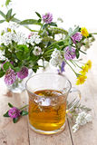 Fresh herbal tea Stock Photo