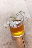Fresh herbal tea Stock Images
