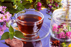 Fresh herbal tea with cocoa Royalty Free Stock Photo