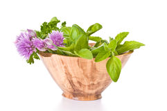 Fresh Herbs. Fresh picked herbs in a handmade wooden bowl Royalty Free Stock Image