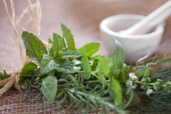 Fresh herbs. Tied to a bundle on burlap with a mortar & pertle in the background. Very shallow DOF, speamint leaves are the focus point Royalty Free Stock Photos